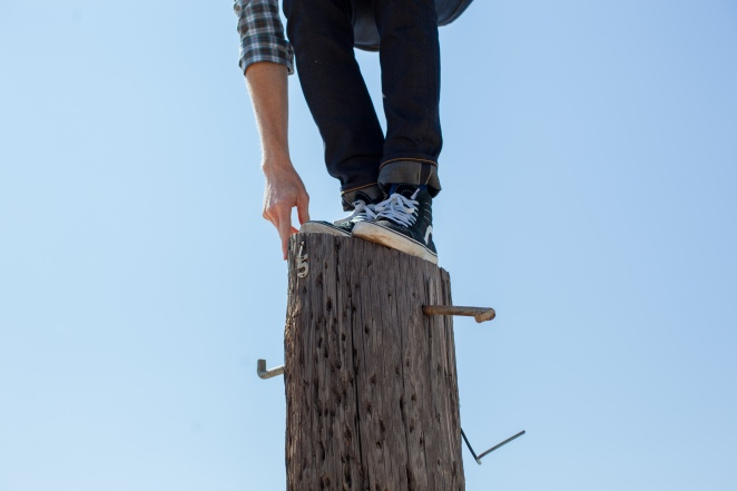 man_on_stump