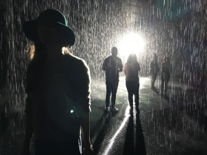 Five people in the Rain Room art installation at the Los Angeles County Museum of Art